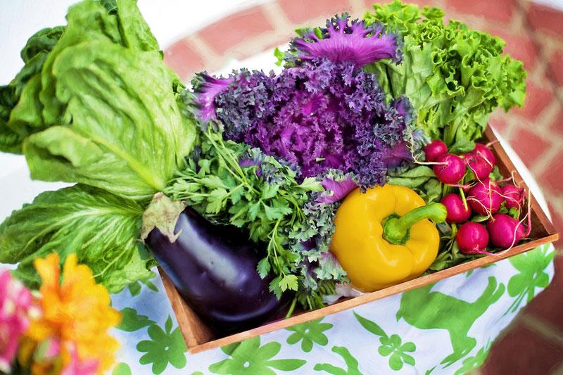 Enzymes dans les fruits et légumes