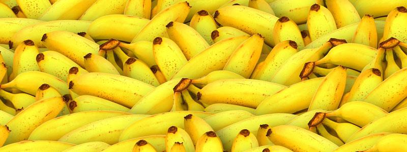 Bien découper les kiwis, ananas, bananes, pêche et mangues pour les faire sécher