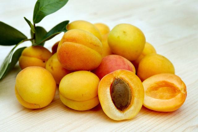Faire sécher des abricots au déshydrateur